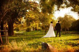 Theofilos & Xrysa Wedding «The wedding video clip»