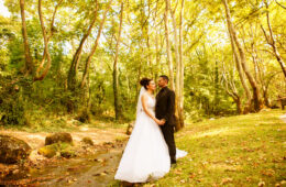 Stathis & Ioanna Wedding «The wedding video clip»