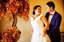 Stefanos & Despoina Wedding «The wedding video clip»