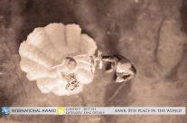 20 – Awarded wedding images, Βραβευμένες φωτογραφίες γάμου